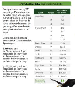 plan-compensation-hb-naturals-bonus-dural-matrix