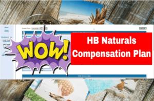 Plan de compensation HB Naturals- explication détaillée du plan de rémunération