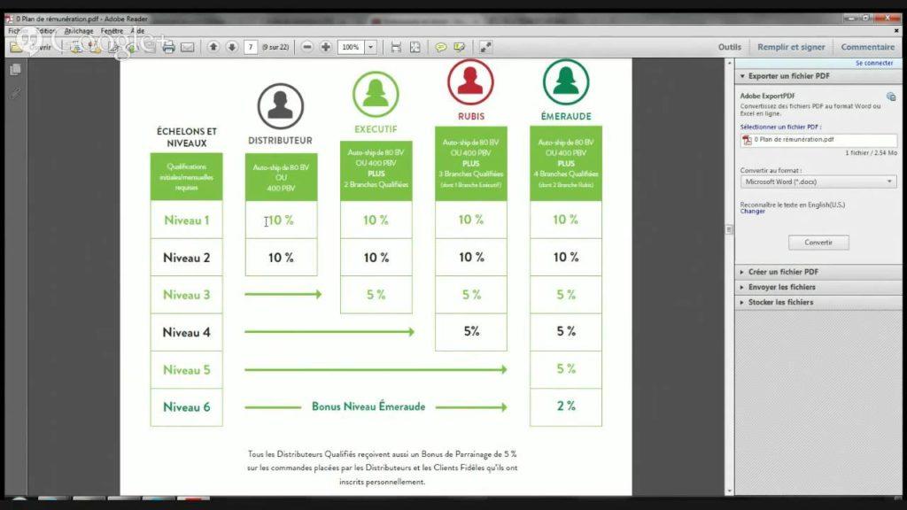 plan de rémunération it works 2020